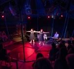 Fringe Circus